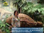Amusement park Animatronic Dinosaurs ( Ankylosaurus ) DWD016