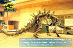 Exhibition hall dinosaurs skeleton replica art toys ( Stegosaur )DWS006
