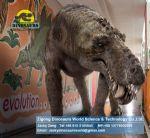 School educational equipments Animatronic Dinosaurs ( Thrinaxodon ) DWD031