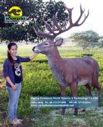 Park decoration life size fiberglass deer Artificial Deer DWA096