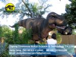 Outdoor amusement park life size dinosaurs (T-Rex) DWD073