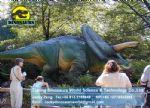 Dinopark Fiberglass products Animatronic Dinosaur Triceratops DWD082