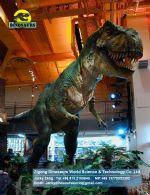 Theme park toys life size animals dinosaurs (Tyrannosaurus Rex) DWD091