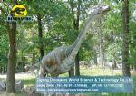 Amusement show model animatronic dinosaur (Brachiosaurus) DWD095