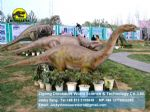 Amusement park exhibition model designs dinosaurs (Shunosaurus) DWD054