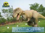 Playground Animatronic Dinosaur costume (Tyrannosaurus Rex,T-rex) DWD066
