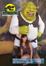 Cartoon character Shrek DWC020