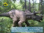 Playground harry potter park Animatronic Dinosaurs ( Triceratops ) DWD051