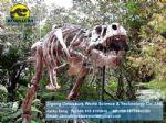Dinosaur animatronic amusement park T- Rex DWS014