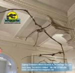 Showroom science dinosaurs skeleton replica pterosaurs DWS012