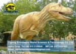 Playground amusement equipment animatronic dinosaur (T-Rex) DWD123