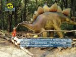 Life size dinosaurs  fiberglass statue mall toys (Stegosaurus) DWD166