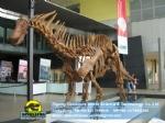 Amargasaurus Amargasaurus dinosaurs fossil skeleton DWS024