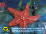 High degree of simulation Marine invertebrates Starfish DWA129