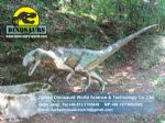 Garden Playground Animatronic Dinosaurs ( Eoraptor ) DWD015